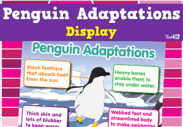 Penguin Adaptations Display