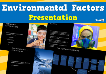 Environmental Factors - Presentation
