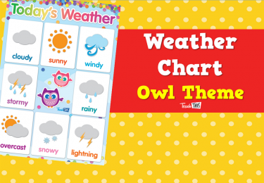 Weather Chart  - Owl Theme
