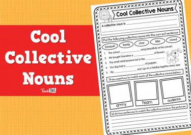 Cool Collective Nouns